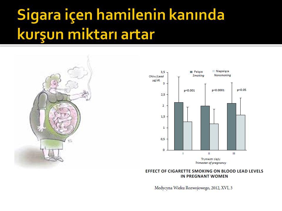 Sigara içen hamilenin kanında kurşun miktarı artar