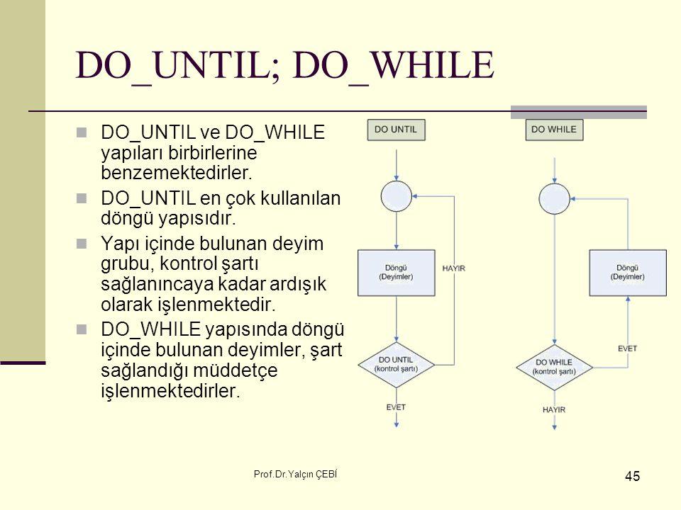 DO_UNTIL; DO_WHILE DO_UNTIL ve DO_WHILE yapıları birbirlerine benzemektedirler. DO_UNTIL en çok kullanılan döngü yapısıdır.