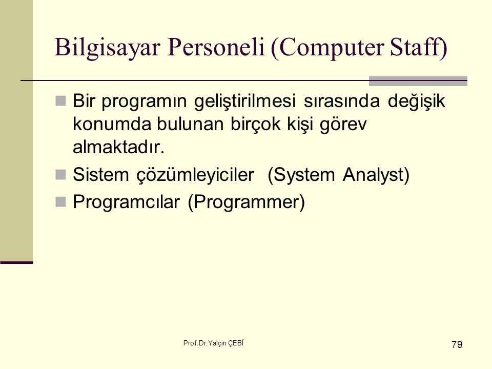 Bilgisayar Personeli (Computer Staff)