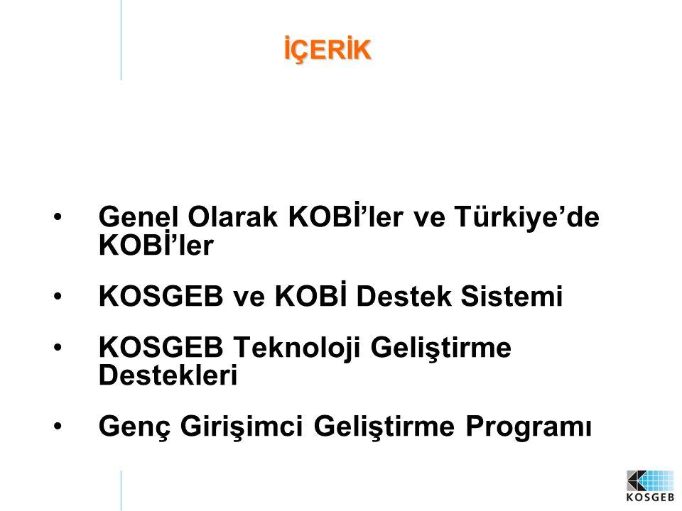 Genel Olarak KOBİ'ler ve Türkiye'de KOBİ'ler