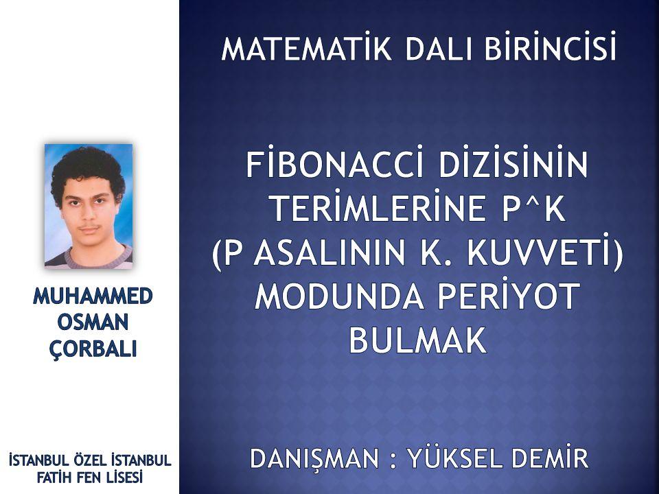 FİBONACCİ DİZİSİNİN TERİMLERİNE P^K