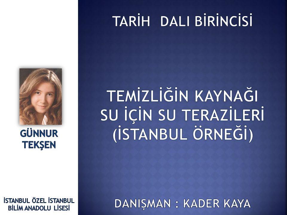 İSTANBUL ÖZEL İSTANBUL BİLİM ANADOLU LİSESİ