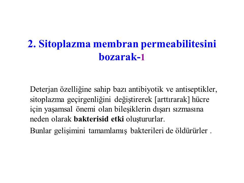 2. Sitoplazma membran permeabilitesini bozarak-1