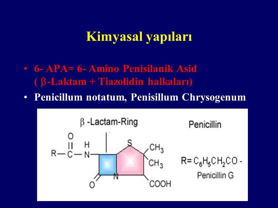 Kimyasal yapıları 6- APA= 6- Amino Penisilanik Asid (-Laktam + Tiazolidin halkaları) Penicillum notatum, Penisillum Chrysogenum.