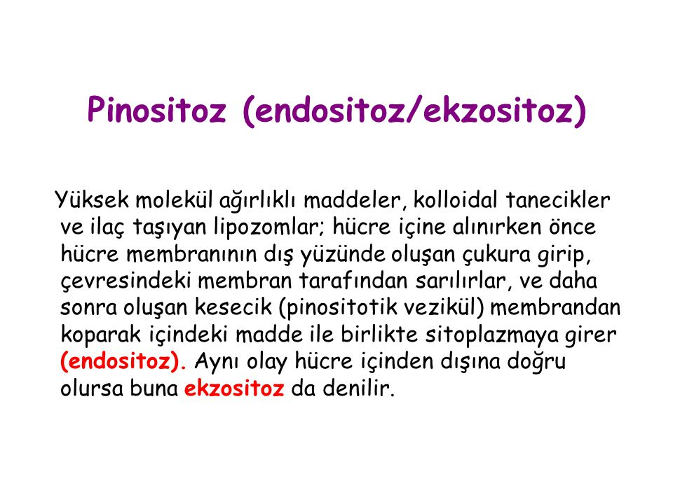 Pinositoz (endositoz/ekzositoz)