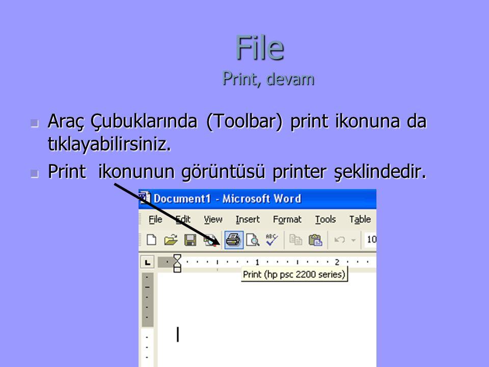 File Print, devam Araç Çubuklarında (Toolbar) print ikonuna da tıklayabilirsiniz.