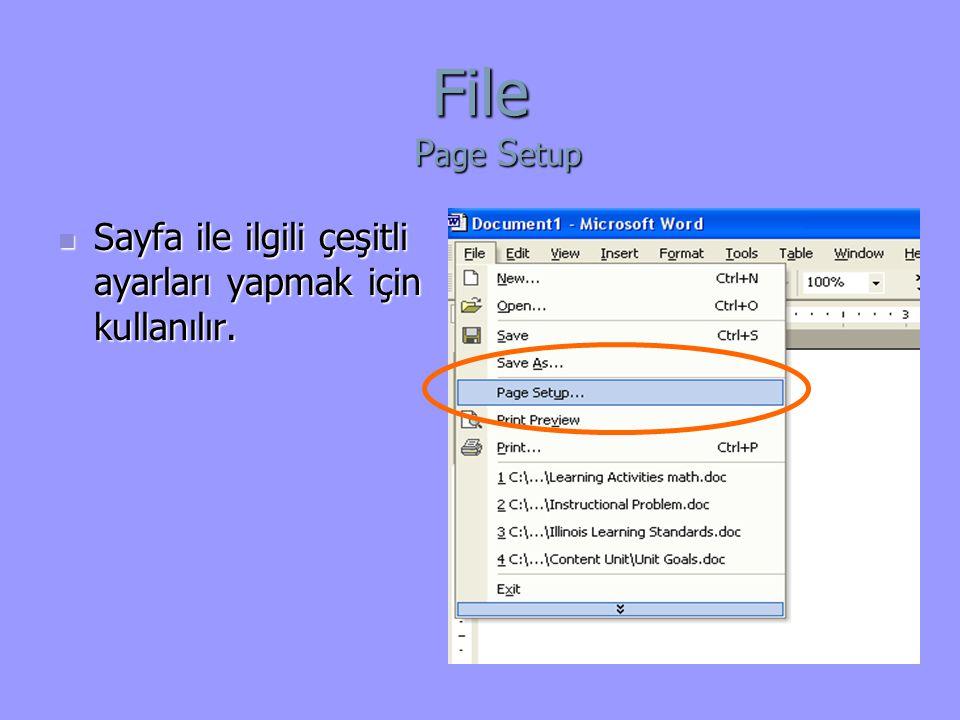File Page Setup Sayfa ile ilgili çeşitli ayarları yapmak için kullanılır.