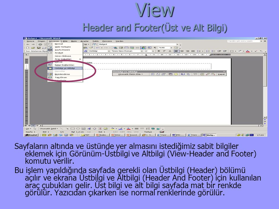 View Header and Footer(Üst ve Alt Bilgi)
