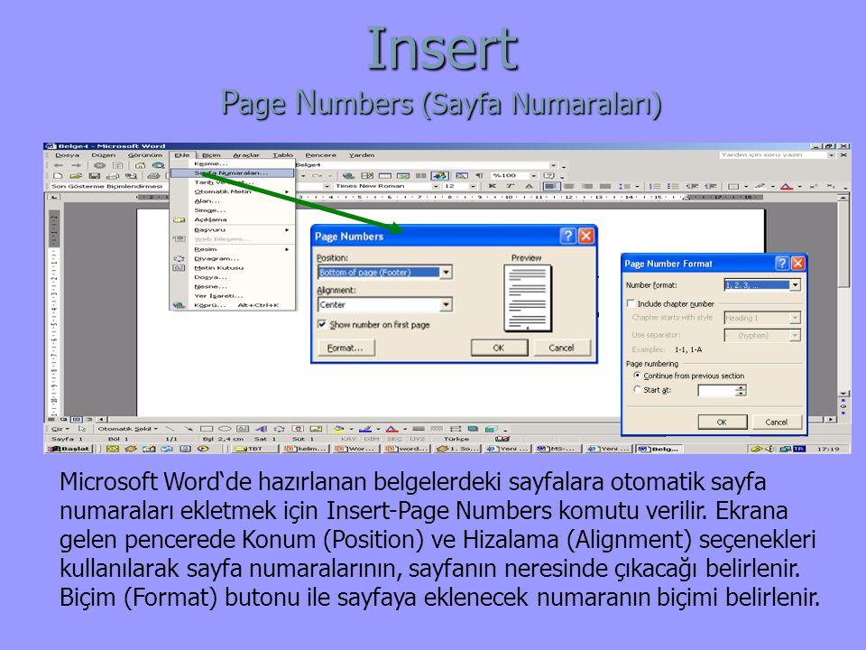 Insert Page Numbers (Sayfa Numaraları)