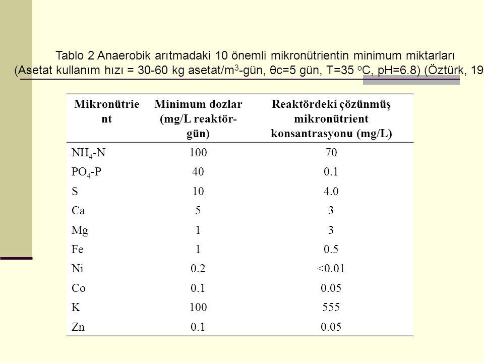 Reaktördeki çözünmüş mikronütrient konsantrasyonu (mg/L)