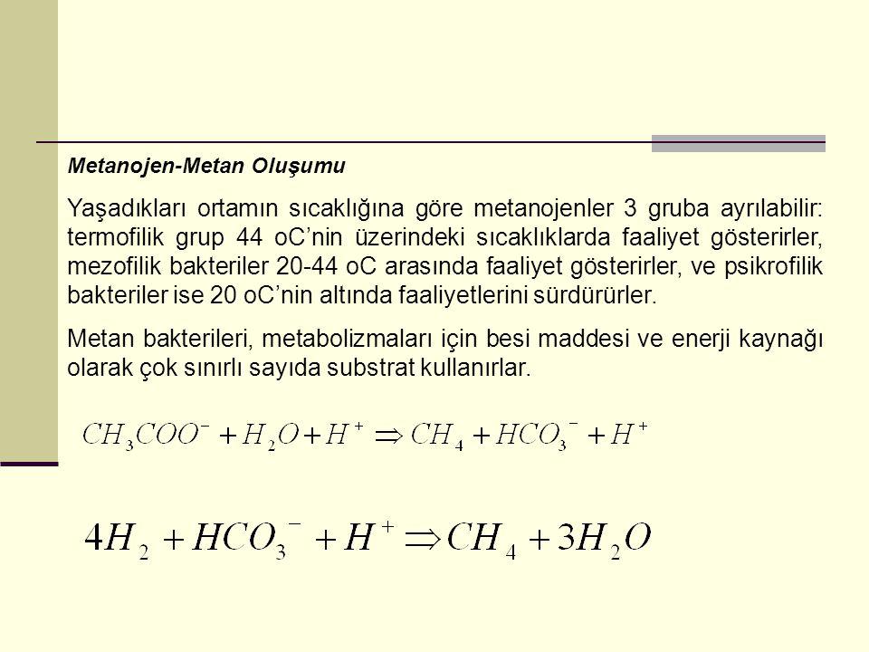 Metanojen-Metan Oluşumu