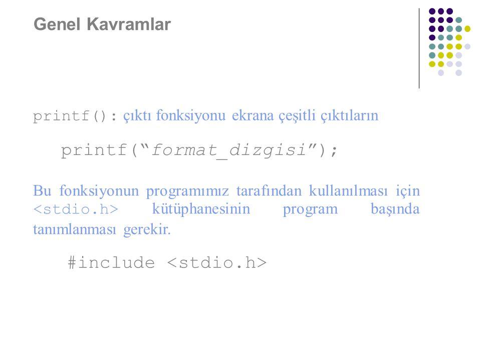 printf( format_dizgisi );
