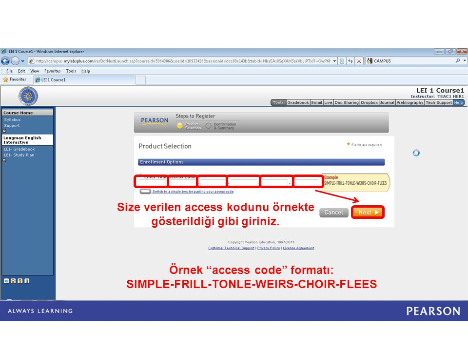 Size verilen access kodunu örnekte gösterildiği gibi giriniz.