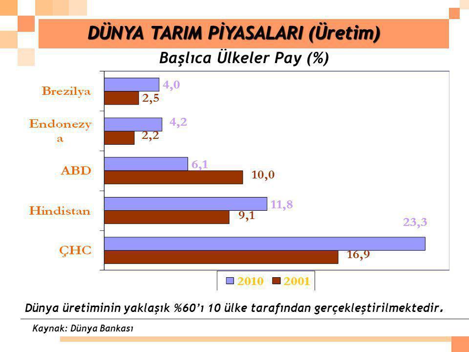 DÜNYA TARIM PİYASALARI (Üretim) Başlıca Ülkeler Pay (%)