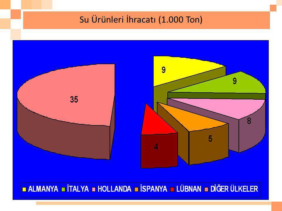 Su Ürünleri İhracatı (1.000 Ton)