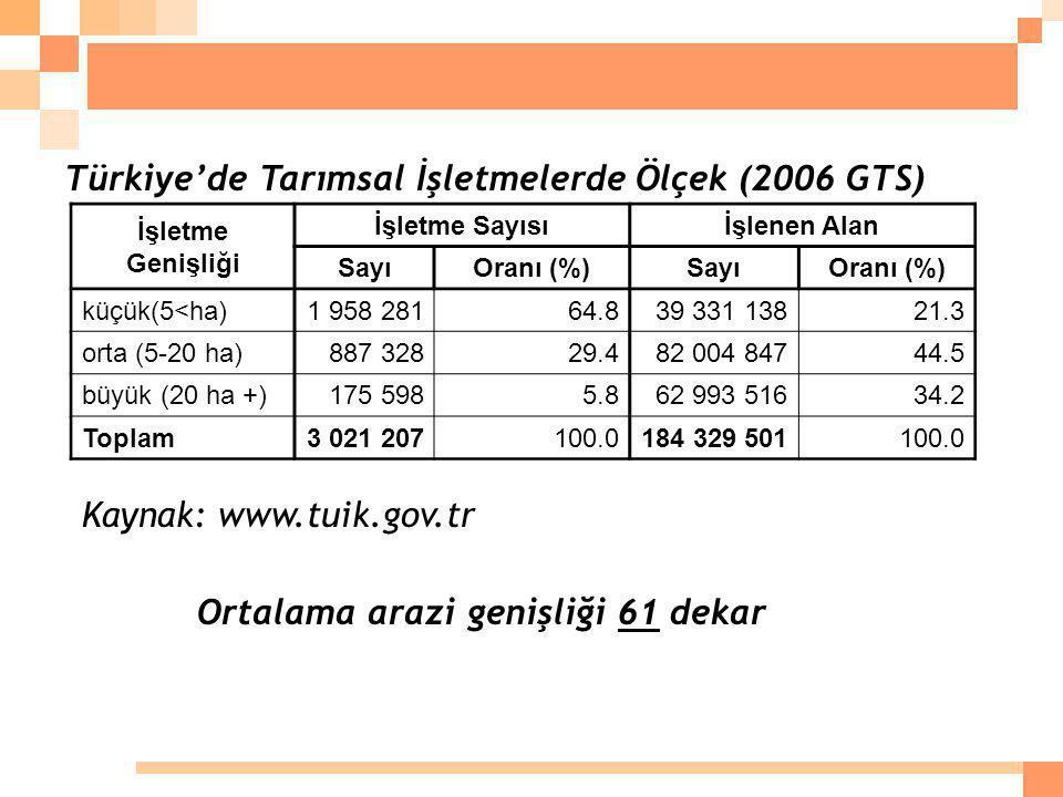 Türkiye'de Tarımsal İşletmelerde Ölçek (2006 GTS)
