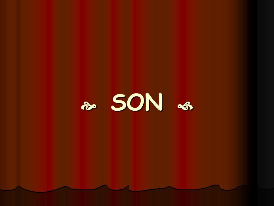  SON 