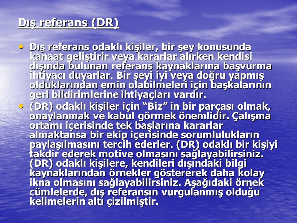 Dış referans (DR)