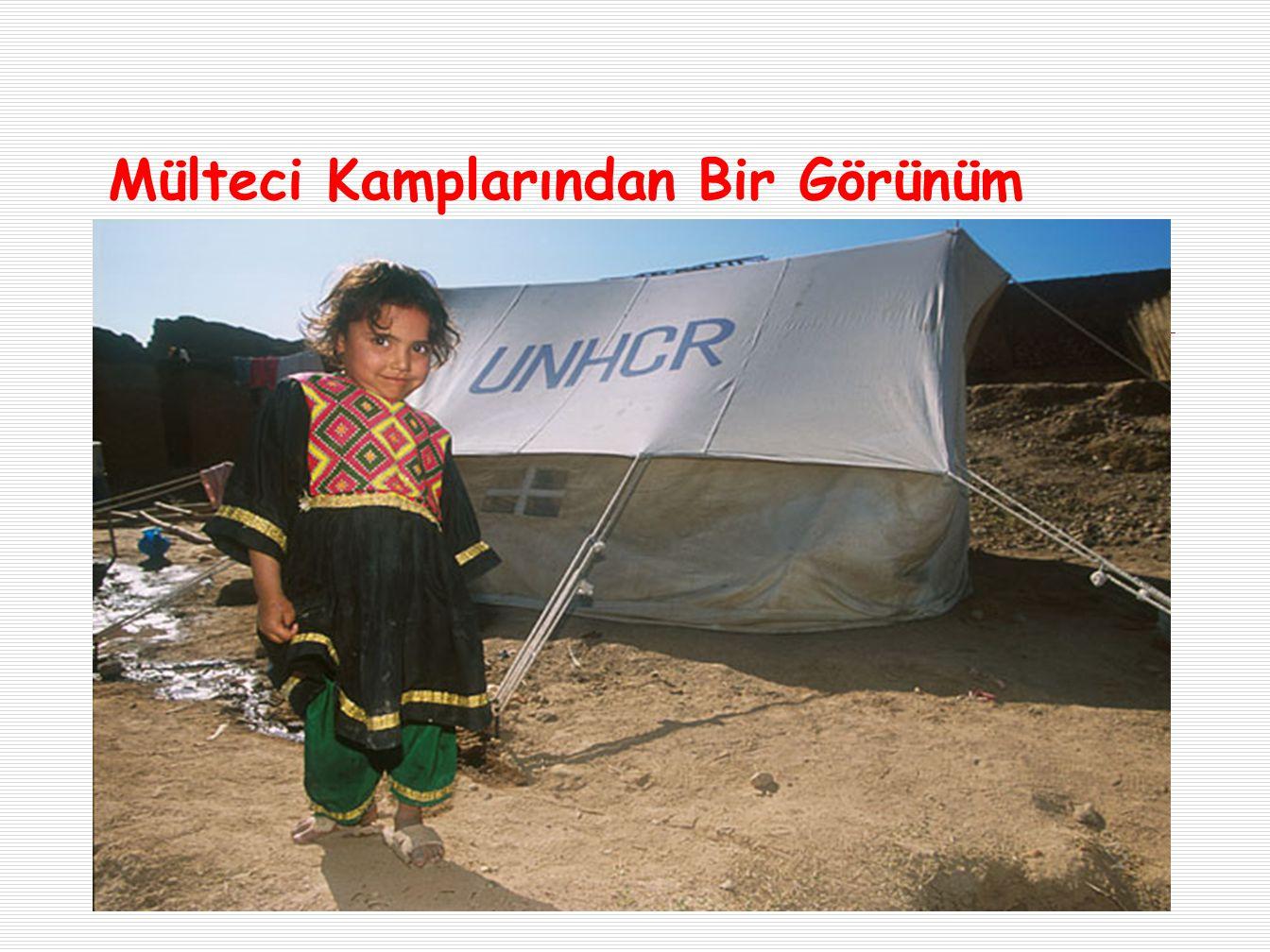 Mülteci Kamplarından Bir Görünüm