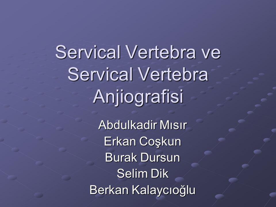 Servical Vertebra ve Servical Vertebra Anjiografisi