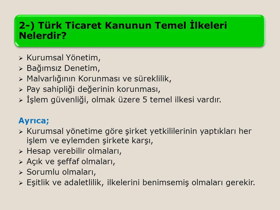 2-) Türk Ticaret Kanunun Temel İlkeleri Nelerdir