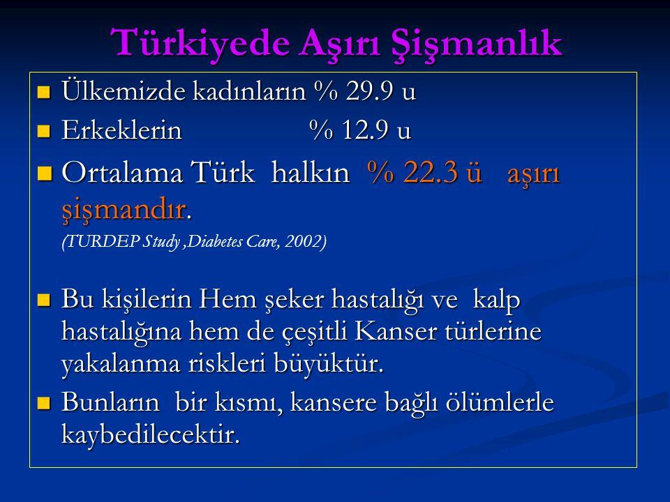 Türkiyede Aşırı Şişmanlık