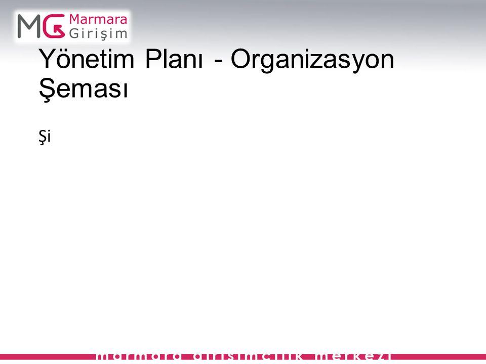 Yönetim Planı - Organizasyon Şeması