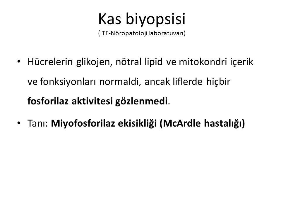 Kas biyopsisi (İTF-Nöropatoloji laboratuvarı)