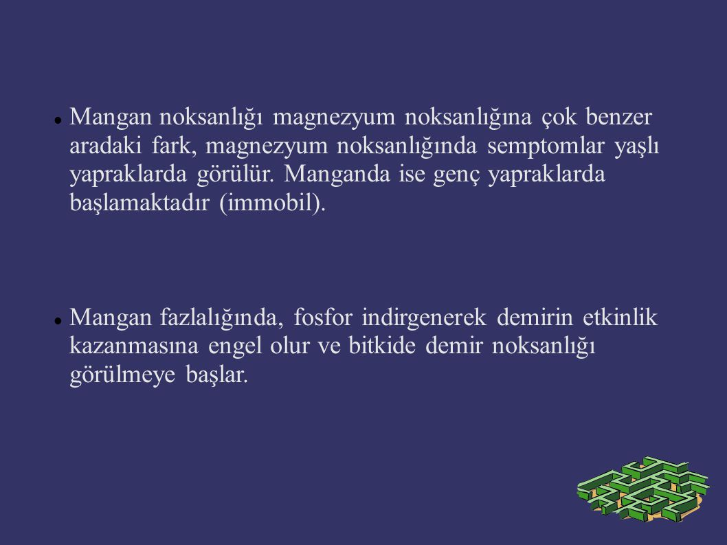 Mangan noksanlığı magnezyum noksanlığına çok benzer aradaki fark, magnezyum noksanlığında semptomlar yaşlı yapraklarda görülür. Manganda ise genç yapraklarda başlamaktadır (immobil).