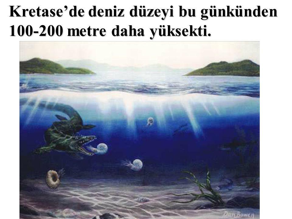 Kretase'de deniz düzeyi bu günkünden 100-200 metre daha yüksekti.