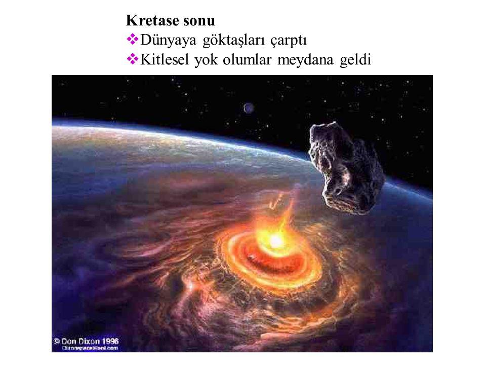 Kretase sonu Dünyaya göktaşları çarptı Kitlesel yok olumlar meydana geldi