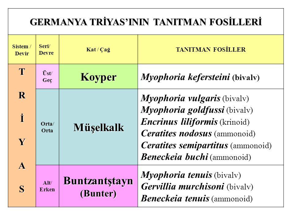GERMANYA TRİYAS'ININ TANITMAN FOSİLLERİ