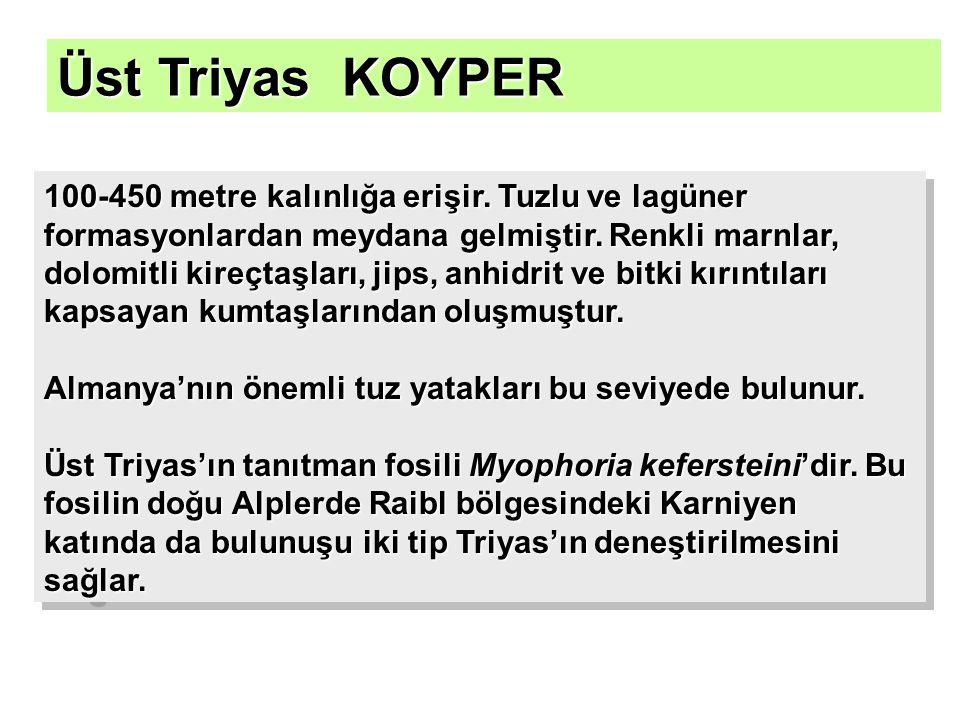 Üst Triyas KOYPER