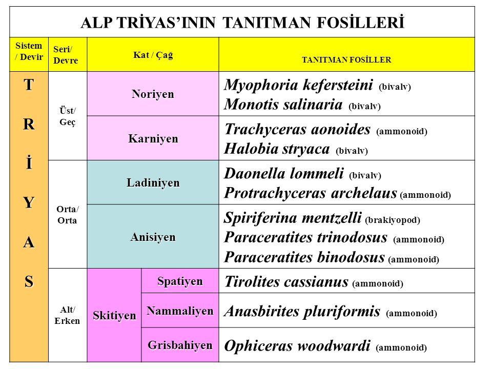ALP TRİYAS'ININ TANITMAN FOSİLLERİ