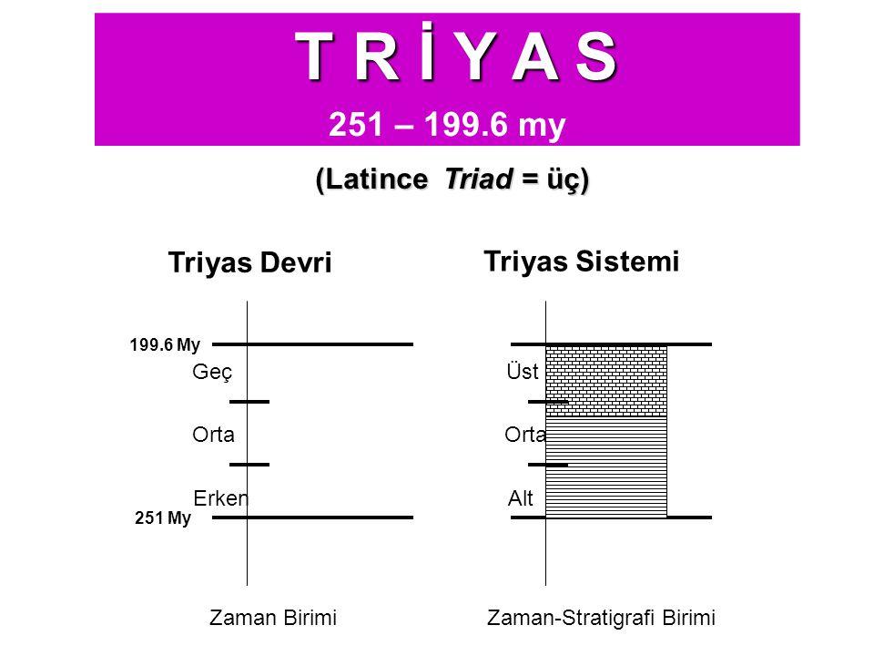 T R İ Y A S 251 – 199.6 my (Latince Triad = üç) Triyas Devri