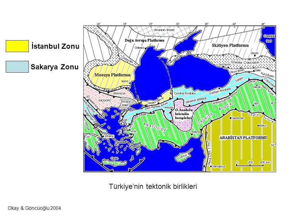 Türkiye'nin tektonik birlikleri