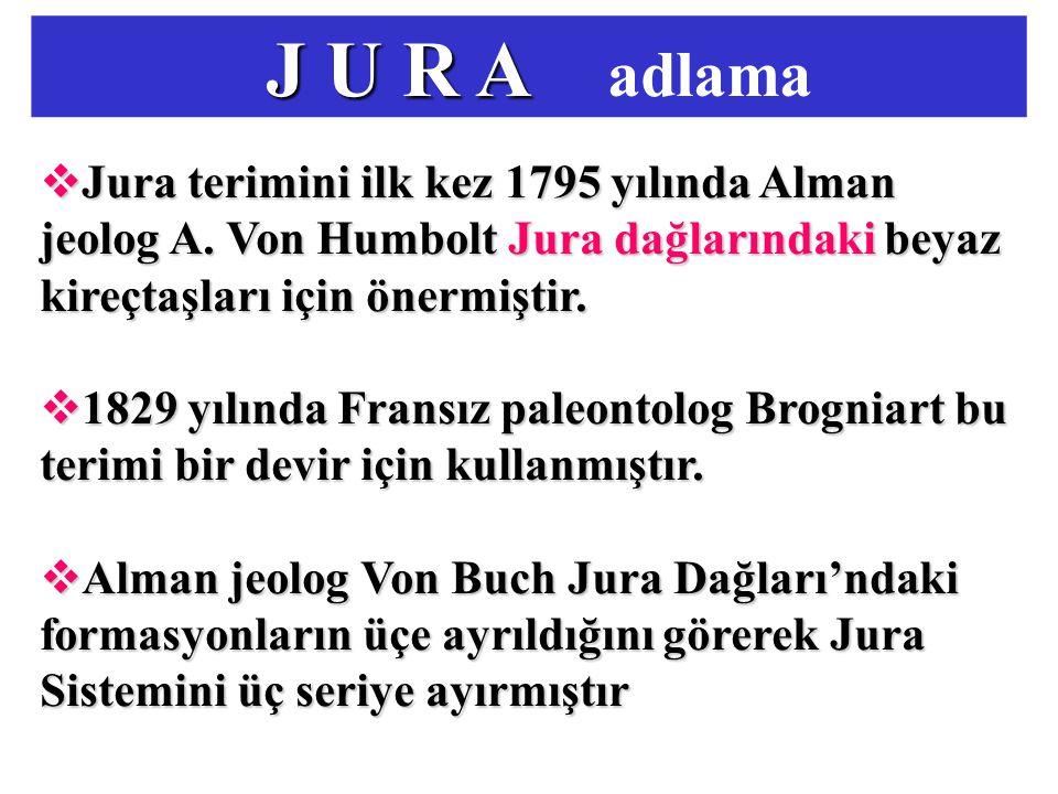 J U R A adlama Jura terimini ilk kez 1795 yılında Alman jeolog A. Von Humbolt Jura dağlarındaki beyaz kireçtaşları için önermiştir.