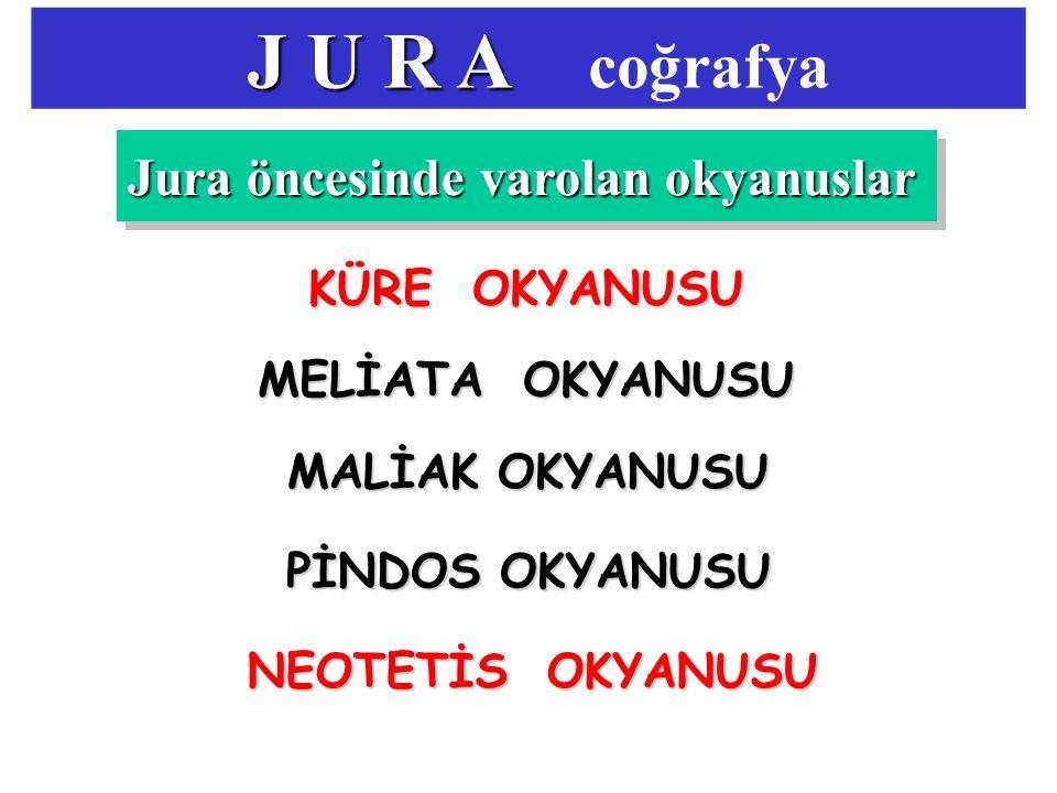 J U R A coğrafya Jura öncesinde varolan okyanuslar KÜRE OKYANUSU