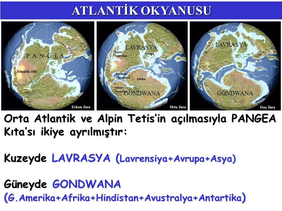 ATLANTİK OKYANUSU Orta Atlantik ve Alpin Tetis'in açılmasıyla PANGEA