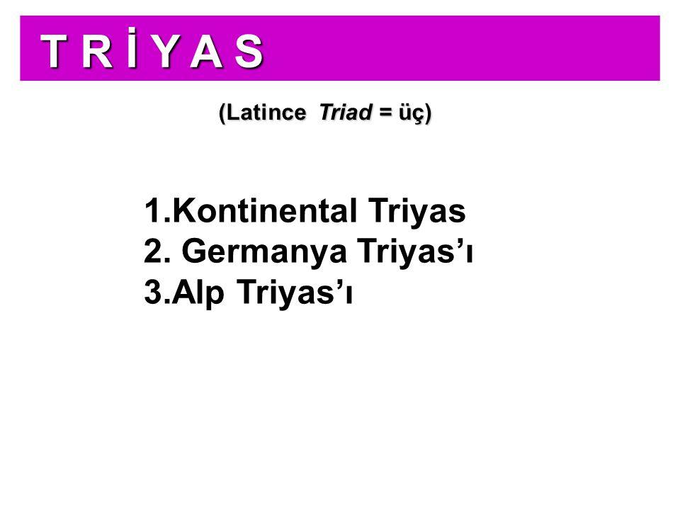 T R İ Y A S Kontinental Triyas Germanya Triyas'ı Alp Triyas'ı