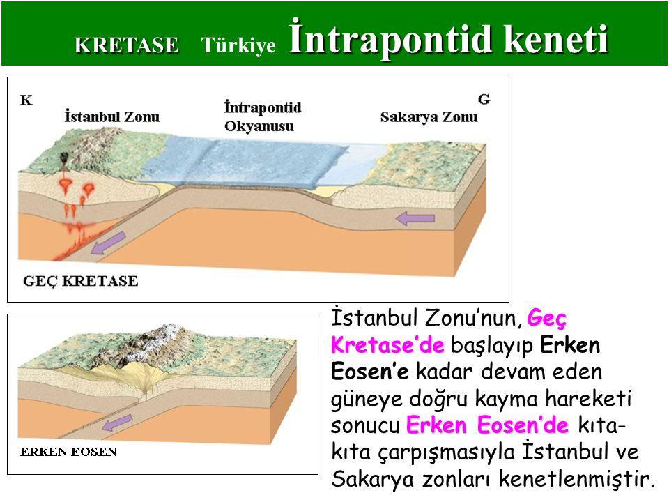 KRETASE Türkiye İntrapontid keneti
