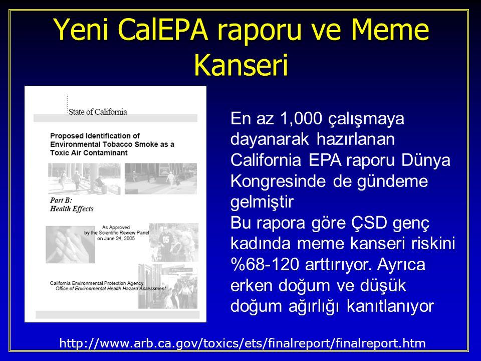 Yeni CalEPA raporu ve Meme Kanseri