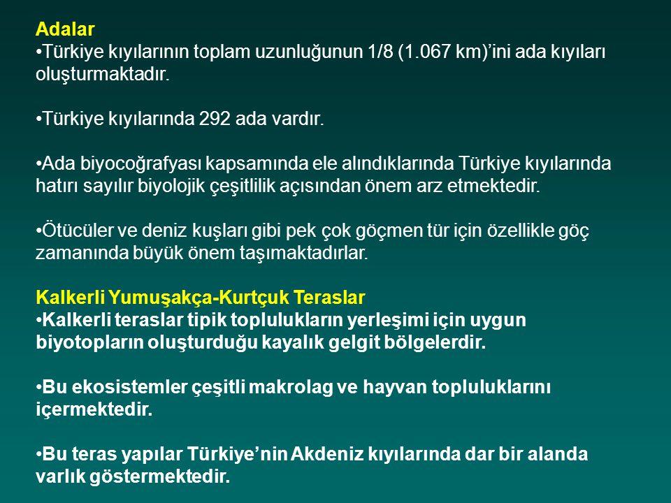 Adalar Türkiye kıyılarının toplam uzunluğunun 1/8 (1.067 km)'ini ada kıyıları oluşturmaktadır. Türkiye kıyılarında 292 ada vardır.