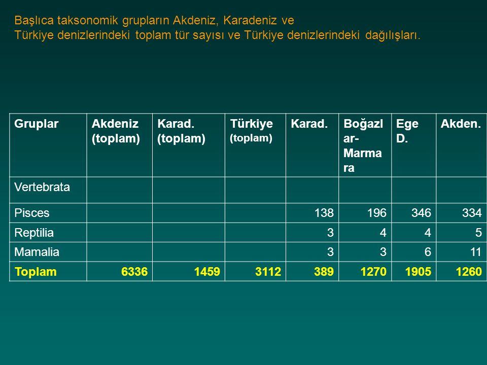 Başlıca taksonomik grupların Akdeniz, Karadeniz ve
