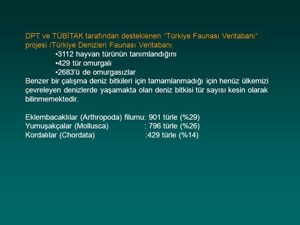DPT ve TÜBİTAK tarafından desteklenen Türkiye Faunası Veritabanı projesi /Türkiye Denizleri Faunası Veritabanı