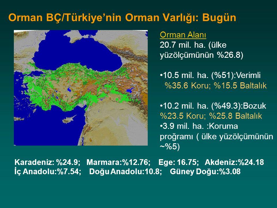 Orman BÇ/Türkiye'nin Orman Varlığı: Bugün