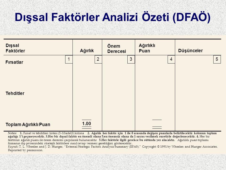 Dışsal Faktörler Analizi Özeti (DFAÖ)