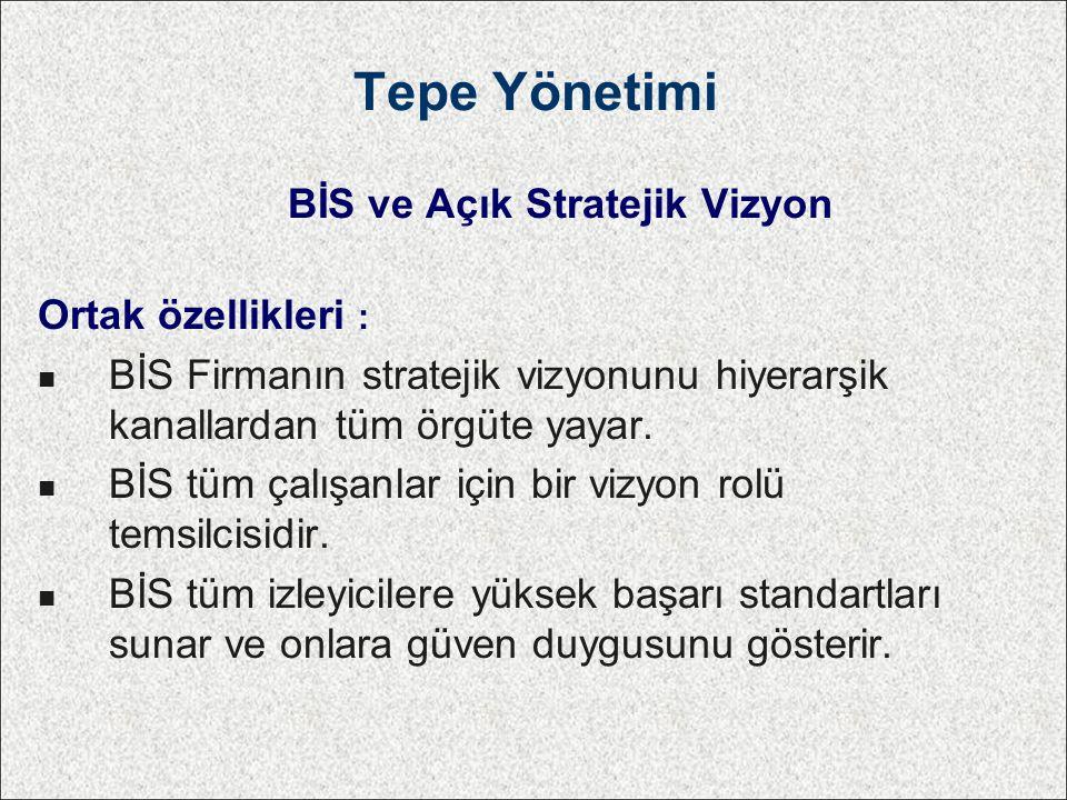 BİS ve Açık Stratejik Vizyon