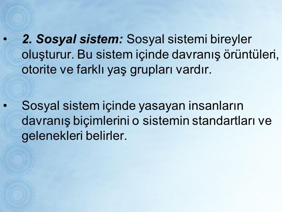 2. Sosyal sistem: Sosyal sistemi bireyler oluşturur