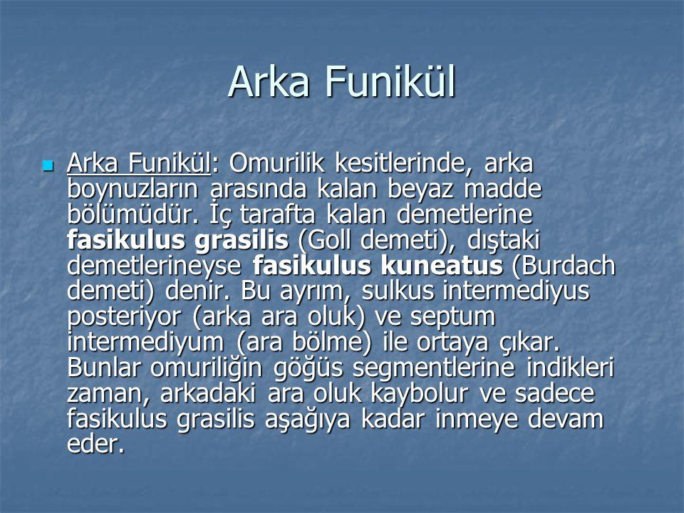Arka Funikül
